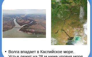 Река волга, откуда начинается и куда впадает одна из самых извесных рек россии