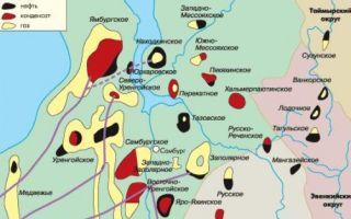 Природные богатства заполярного ямала. нефть и газ вынгапуровского месторождения