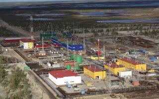 Вынгаяхинское месторождение нефти и его углеводородные богатства