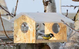 Как самому сделать голубятню, кормушку и питомник для птиц?