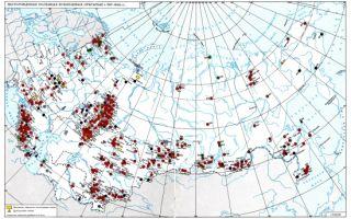 Холмогорское месторождение нефти: неиссякаемая кладовая энергоресурсов