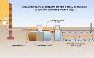 Септик для высокого уровня грунтовых вод: как выбрать и установить