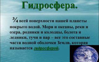 Гидросфера — незаменимая основа всего живого на нашей планете