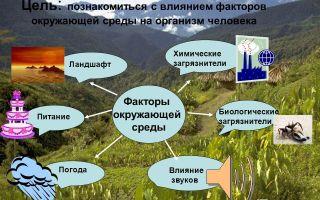 Как развитие экологических технологий влияет на окружающую среду и человечество