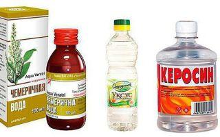 Стоит ли применять лечение кур водкой и другими народными средствами?