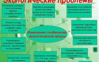 Чебоксары — впроцессе решения проблем с экологией