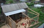 Как построить сарай для кур несушек своими руками?