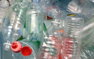 Полиэтилентерефталат: дискуссия о цене пластиковой бутылки