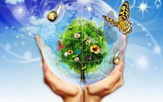 Сохраняйте окружающую среду – утилизируйте краски и лаки