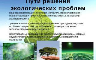 Ставрополь: краткая информация, экологическая ситуация, проблемы и их решение
